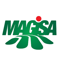 Magisa